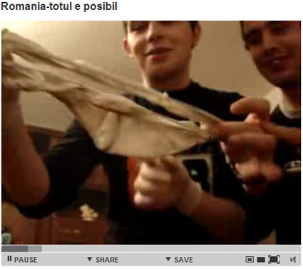 YoutubeRO12.jpg