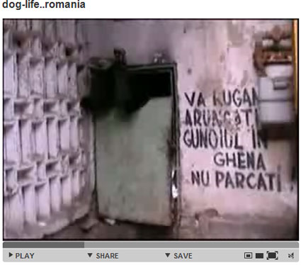YoutubeRO2.jpg